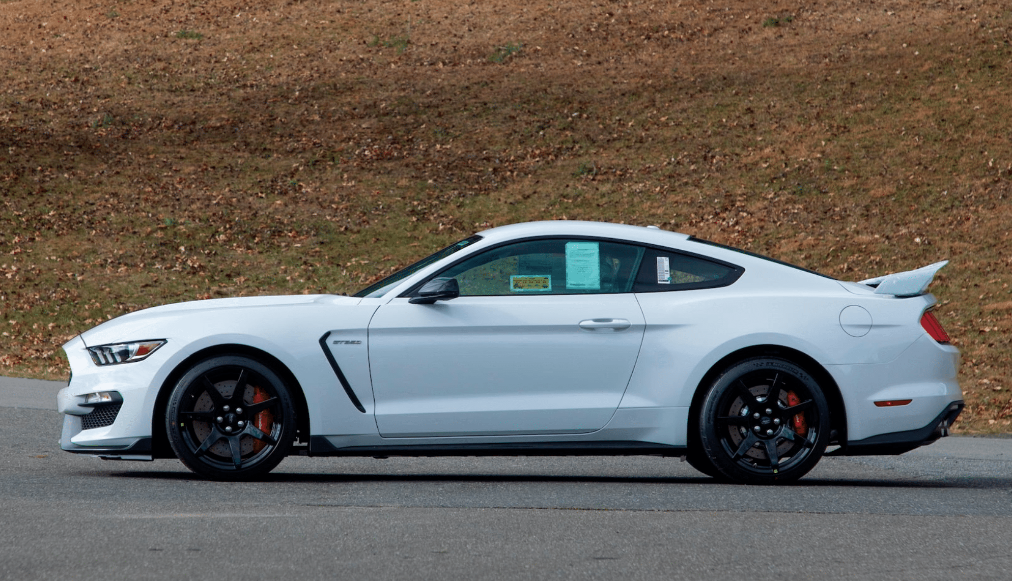 2018-FORD-SHELBY-GT350R-.png