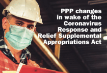 ppp cover image